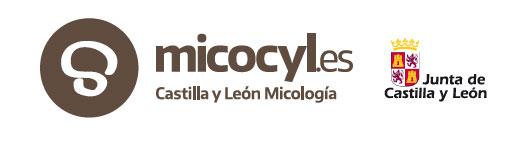 MICOCYL. Permisos setas Castilla y León