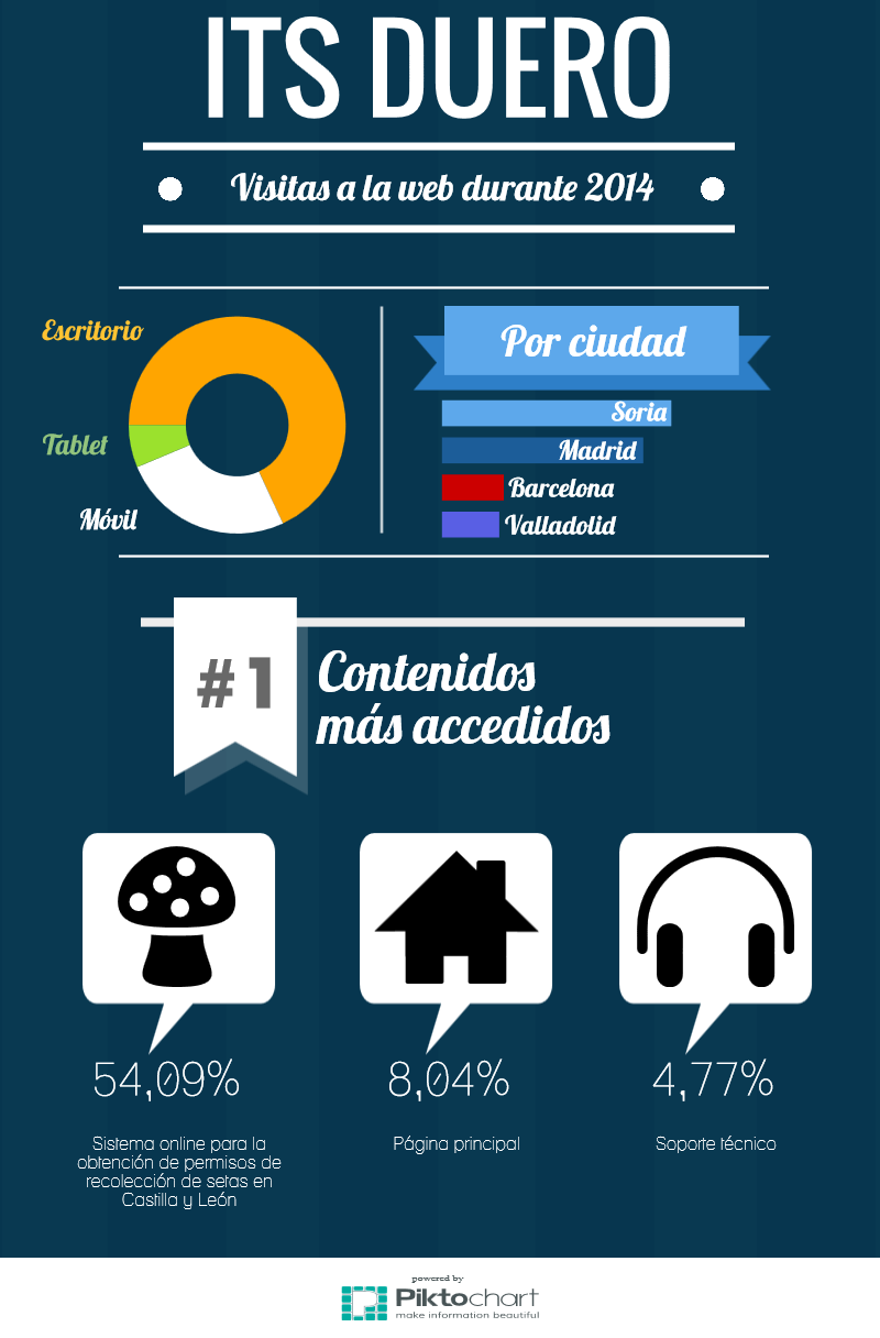 Datos visitas web ITS Duero 2014